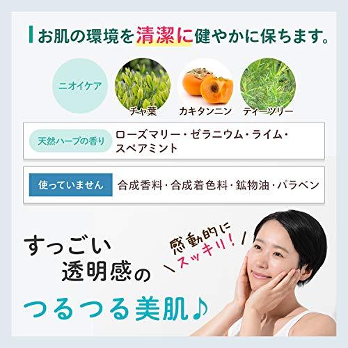 グリングラン緑宝エステ[120g/約3ヶ月分]天然成分豊富泡洗顔(ハーブの香り)泡立てネット付き