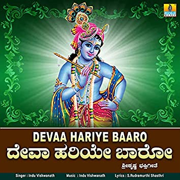 Devaa Hariye Baaro - Single