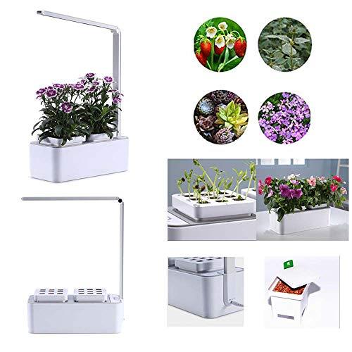 Indoor Herb Garden Smart Garden Kit For Home Room Kitchen Office