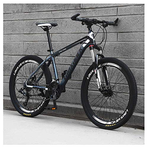 Z-LIANG Outdoor sports Mens MTB Disc Brakes, 26 Inch Adult Bicycle 21Speed Mountain Bike Bicycle,Gray