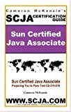 SCJA Sun Certified Java Associate Study Guide for Test CX-310-019 by McKenzie, Cameron W published by Pulpjava (2007)