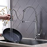 ATUM HOME Modern Chrome Kitchen Sink Mixer Tap with Pull Out Spray, Swivel