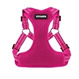 Voyager Step-in Flex Dog Harness - All Weather Mesh, Step in Adjustable Harness for Small and Medium Dogs by Best Pet Supplies - Fucshia, X-Small