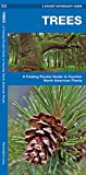 Trees: A Folding Pocket Guide to Familiar North American Species (Pocket Naturalist Guide Series)