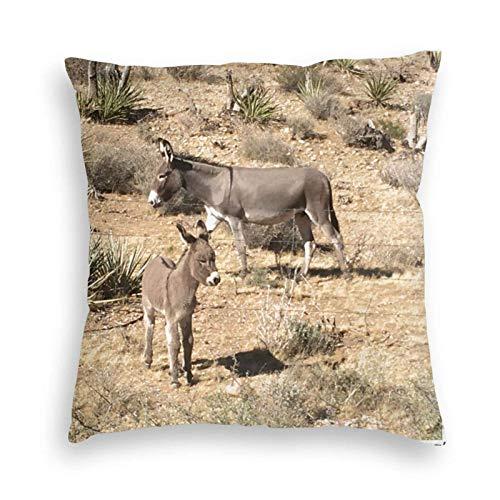 Funda de cojín Funda de Almohada Tiro decorativo del burro del Nv del parque estatal de Red Rock para la decoración de la sala de estar del dormitorio del sofá del sofá Cojines 45X45CM