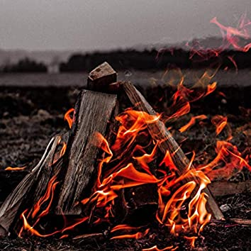 Burning Logs on a Fire