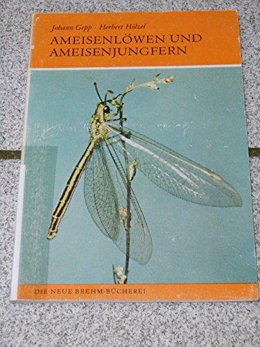 Ameisenlöwe und Ameisenjungfer. Myrmeleonidae