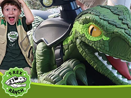 Dinosaur Green Raptor Surprise Toys