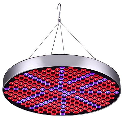 LED-Pflanze wachsen Lichter, JIAN YA NA UFO 250 LED-Innenanlagen, die Glühlampen mit rot-blauem Spektrum-Hydroponik-Anlagen-hängendem Installationssatz für die Keimung, vegetative Blüte wachsen
