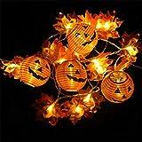 Gallity Halloween Pumpkin Lights, 20 LED Battery Powered String Lights, 3D Jack-O-Lantern Orange Pumpkin Lights,Maple Leaf Fairy Lights for Halloween Decorations Outdoor, Indoor, Party
