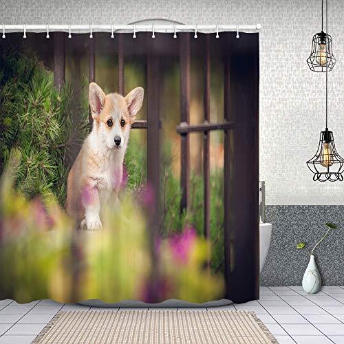 "pop-belief Shower Curtain Set,Welsh Corgi Pembroke Puppy Garden,Waterproof Bathroom Curtains with 12 Hooks Modern Accessories Machine Washable 60""x72"""
