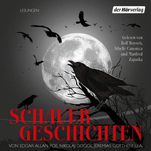 Schauergeschichten Titelbild