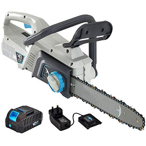 SWIFT 40V EB212D2 Cordless Chainsaw Lightweight 30Cm OREGON Guide Bar with...