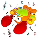 Musical Lobster Toy for Toddlers Aged 1 2 3 4 5+ (TG721) - Interactive Educational Learning Toy for Toddler Boy or Girl Aged 1 2 3 4 5+ by ThinkGizmos