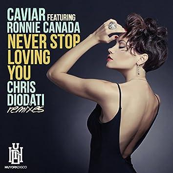 Never Stop Loving You (Chris Diodati Remixes)