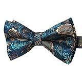 HISDERN Corbata de lazo de boda de mariposa ajustable con cuello de pajarita de Paisley Pre-atado