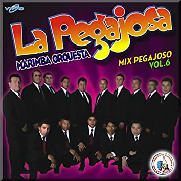 Mix Pegajosos Vol. 6. Música de Guatemala para los Latinos