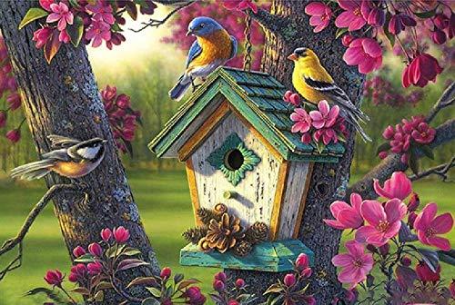 Digitaal olieverfschilderij vogelhuisje DIY Home Office Decoratie geschenken, kinderen beginners kleur frameloze canvas schilderkunst handwerk door nummer 40 * 50 cm