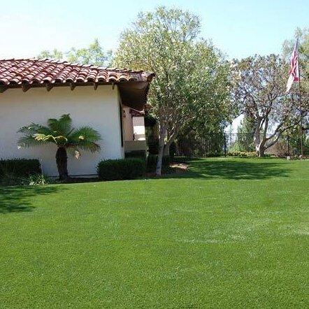 300 pcs Graines de gazon/pelouse Bio Graines, faible/quatre saisons Vert Convient pour une famille de jardinage