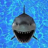 Denis Brogniart Un Requin [Explicit]