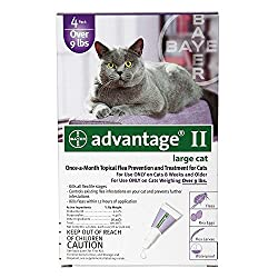 "q?_encoding=UTF8&ASIN=B00ERZ3NSA&Format=_SL250_&ID=AsinImage&MarketPlace=US&ServiceVersion=20070822&WS=1&tag=petscar-20&language=en_US The vet recommended flea treatment for cats ""Get rid of cats flea Once And for All"""