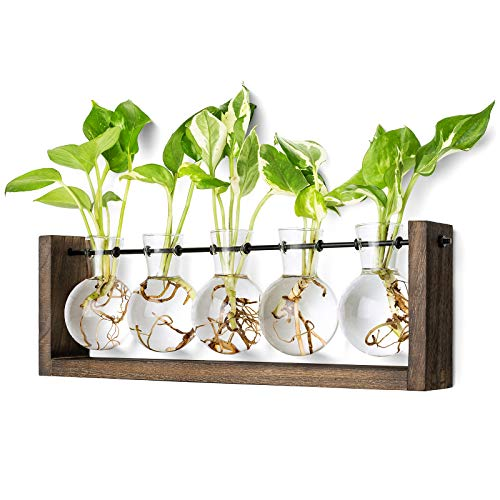 Mkono Plant Terrarium with Wooden Stand, Wall Hanging Glass Planter Desktop Propagator Bulb Vase Metal Swivel Holder Retro Rack for Hydropoincs Plants Home Office Decor(5 Bulb Vase)