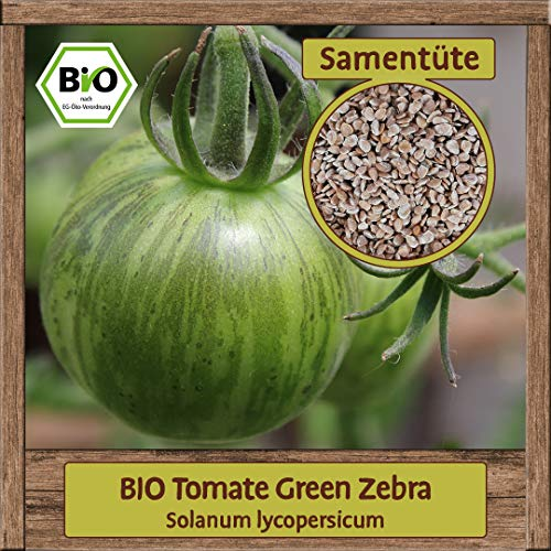 Samenliebe BIO Gemüse Samen Tomaten Green Zebra (Solanum lycopersicum) | BIO Tomatensamen Gemüsesamen | Samenfestes BIO Saatgut für 10 Pflanzen
