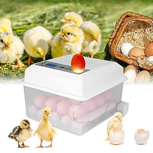 GJCrafts Incubadora de huevos Volteo automático de huevos Pantalla LED digital Mini incubadora automática Adecuado para incubar todas las aves de corral-pollos (Incubadora de 16 huevos)