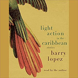 Light Action in the Caribbean audiobook cover art
