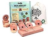 ZIDINA© - Protezione antitarme – 40 anelli in legno di cedro biologico di alta qualità – anelli di tarme per grucce – pura natura, nessuna chimica – effetto diretto