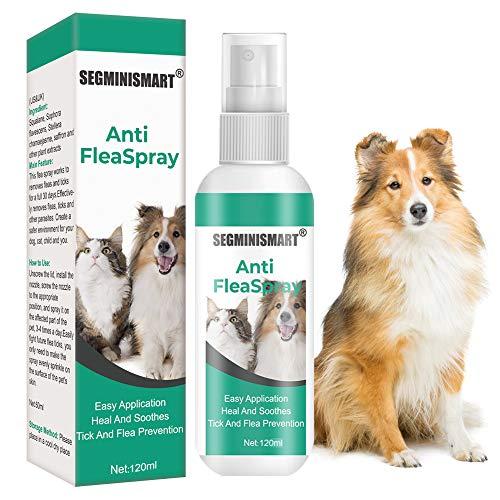 SEGMINISMART Flea Spray,Pulgas Spray,Anti Pulgas,Spray de protección contra pulgas, Pray Repelente de pulgas de Ingredientes Naturales para Perros Pulgas Garrapatas