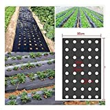 1ピース5ホール95cm 0.02mmブラック穴のあいたPEフィルム 植物植物の膜農業植物マルチシードプラスチックマルチ Size  0.95x50m