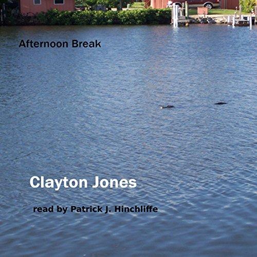 Afternoon Break audiobook cover art