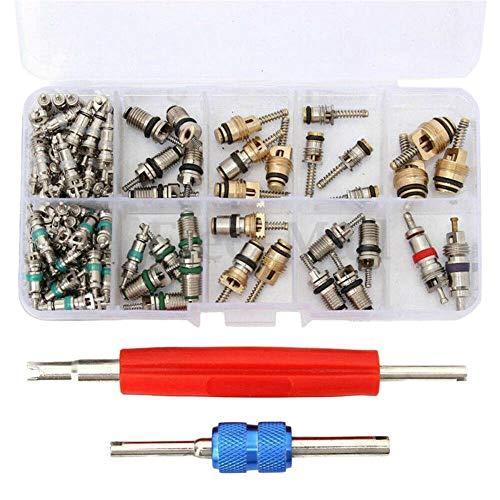 Milkvetch 102 Piezas Universal AC R12 & R134A Kit de Herramientas de InstalacióN de Removedor de NúCleo de VáLvula de Aire Acondicionado con 2 Herramientas de ExtraccióN