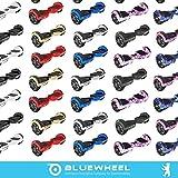 Bluewheel HX310s - 8