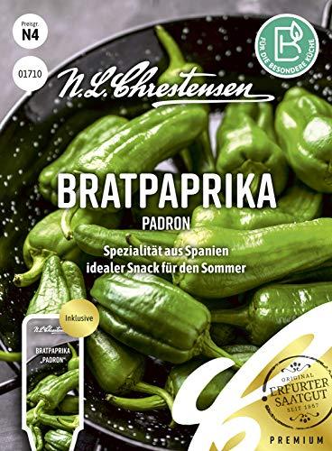 Bratpaprika Padron, Spezialität aus Spanien, Samen