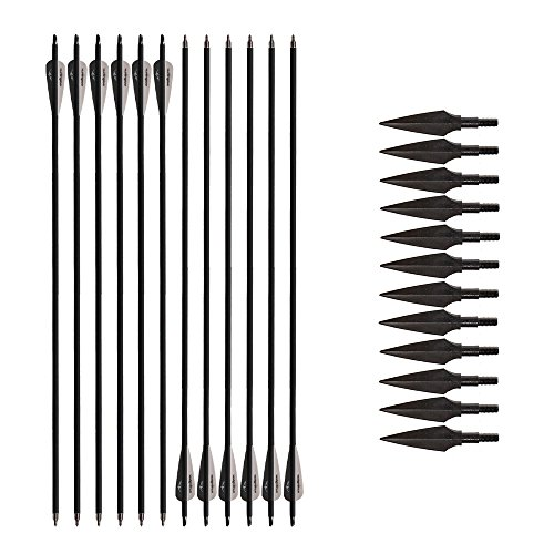 Huntingdoor 12Pcs Archery Carbon Arrows 31 inch Hunting Target Arrows Spine 550 with 12Pcs Metal Archery Broadheads Arrow Tips for Recurve Compound Bow Target Practice Outdoor Gift