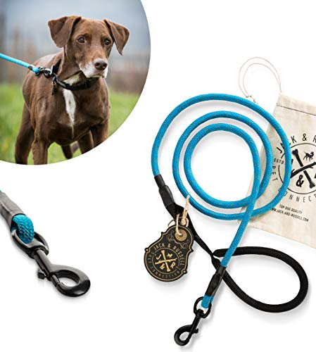 Jack & Russell Hundeleine Tajo aus hochwertigem Kletterseil mit Bolzenkarabiner Hunde Leine mit Soft-Grip Handschlaufe (Blau/Reflektierend)