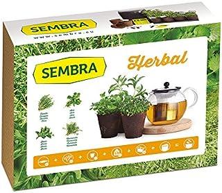 Amazon.es: semilleros