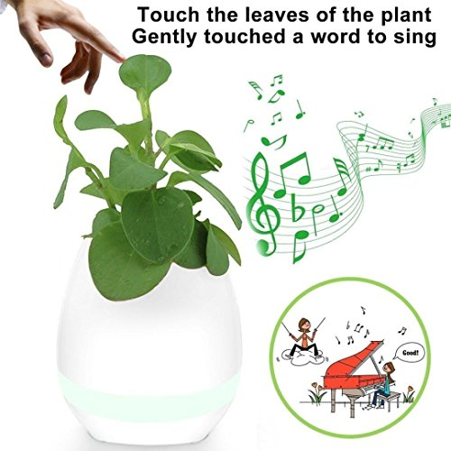 Music Flower Pot Play Piano on a Real...