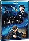 Dúo Harry Potter 1 + Animáles Fantásticos Blu Ray [Blu-ray]