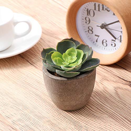 Yardwe 5 Stücke Künstliche Sukkulenten kunstpflanze mit Töpfen Tischdeko Hausgarten Deko - 10