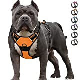 Best No Pull Dog Harnesses - IPETSZOO No Pull Dog Harness for Large Dogs Review