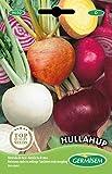 Germisem hullahup color mezcla semillas de remolacha 5 g