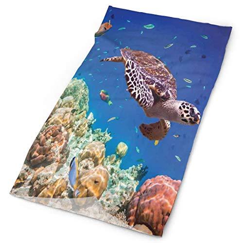 GUUi Headwear Headband Head Scarf Wrap Sweatband,Lonely Old Tropical Sea Turtle Swimming Shoal Sea Sponges Maldives Image,Sport Headscarves for Men Women