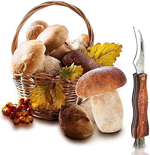 Messer zum Pilze sammeln, Pilzmesser braun mit weicher Bürste und Lineal, Holzgriff rostfreie Klinge Edelstahl, Champignon Trüffel Taschenmesser - Klappmesser - Freizeitmesser mit Schlüsselring