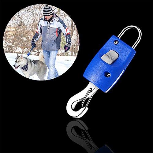 Flexible Hundeleine Heavy Duty Reflektorband, Hund Walking Leine für große Medium Kleine Hunde bis 110lbs, One Button Bremse & Lock, Knochen mit Rolle der Beutel, 16.4ft/5m