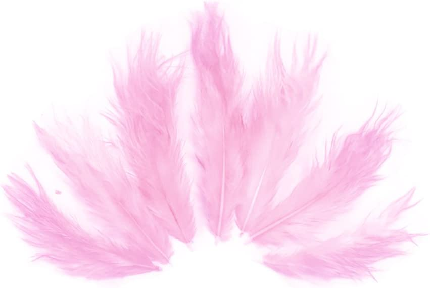 SALENEW very popular! Craft Feathers - 1 Dozen Solid Light Large special price Chickabou Rooster Fl Pink
