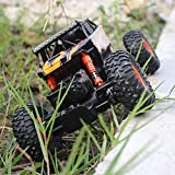WGFGXQ 2.4GHz RC SUV Modelo de Control Remoto Camión Todoterreno Vehículo con orugas Bicicleta de Escalada Niño Juguete Adulto RC Coche de Carreras Recargable