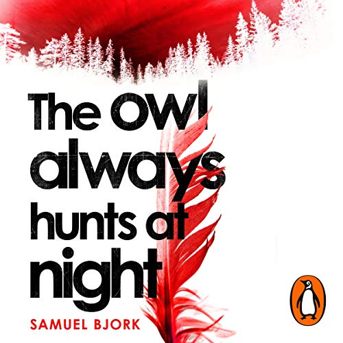 The Owl Always Hunts At Night: Holger Munch & Mia Kruger, Book 2